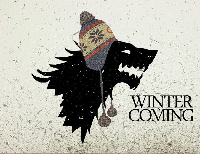 GoT Winter is coming funny pic